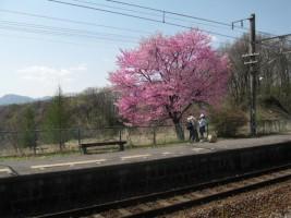 2007050501.jpg