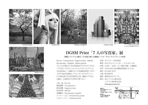 dgsmp_vol1_04.jpg